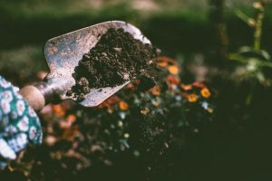person-digging-on-soil-using-garden-shovel-1301856